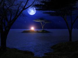 شب عشق